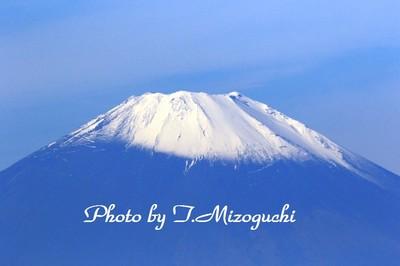 IMG_8371-1.jpg